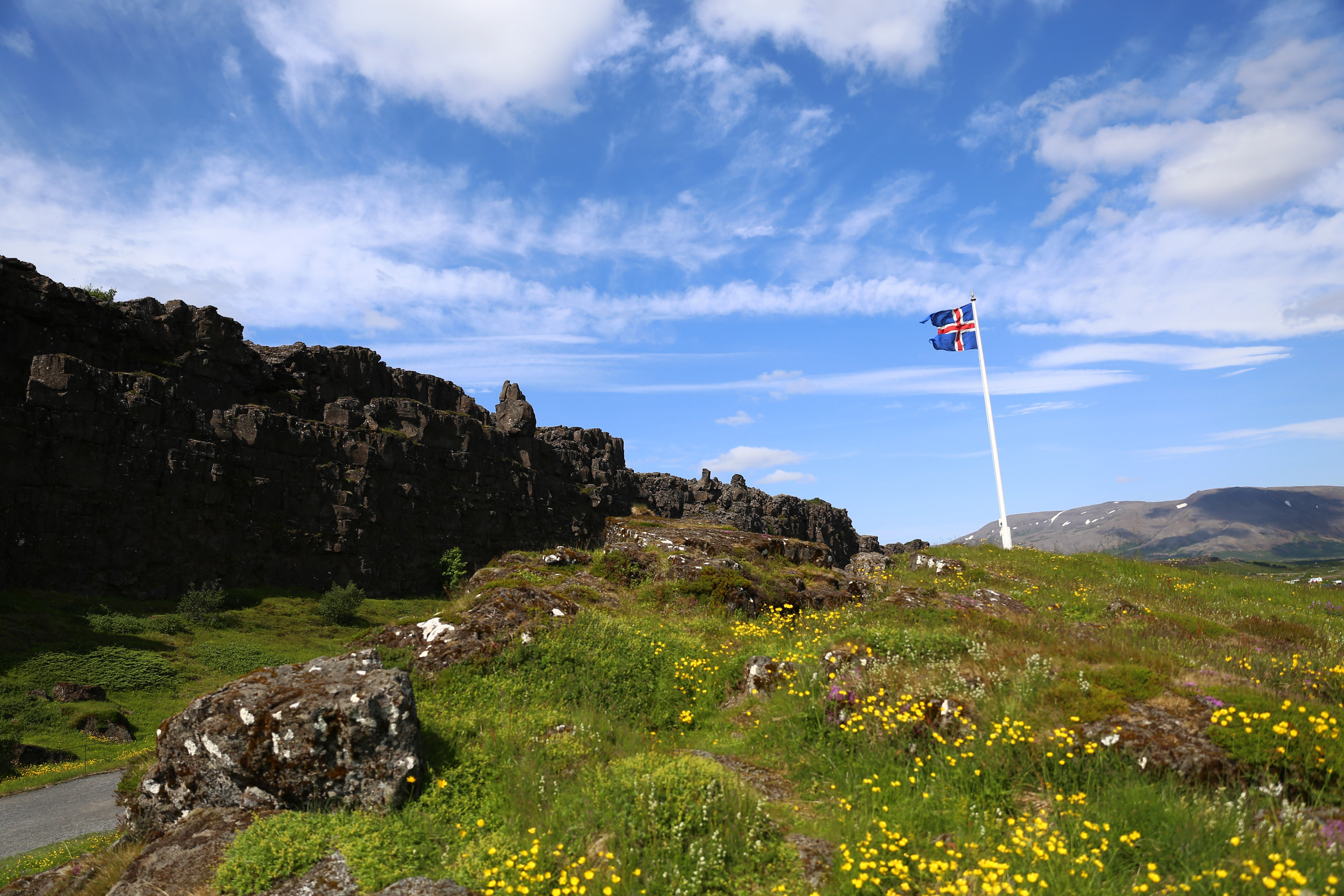 Reisefoto Island: Flagge im Þingvellir Nationalpark ©Imke Haverbusch