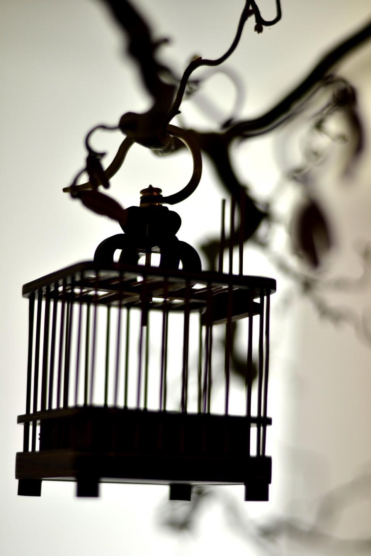 Abstrakte Fotografie: Schattenspiel, Käfig ©Imke Haverbusch