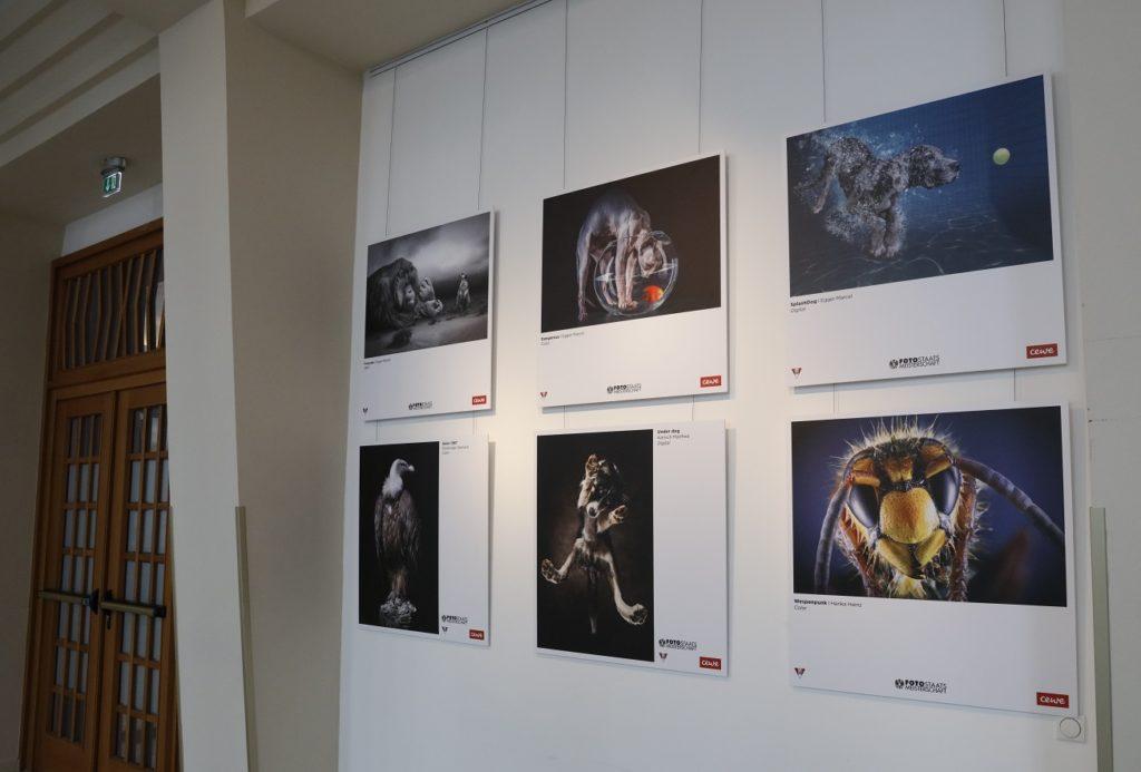 VOEAV_CEWE_Ausstellung