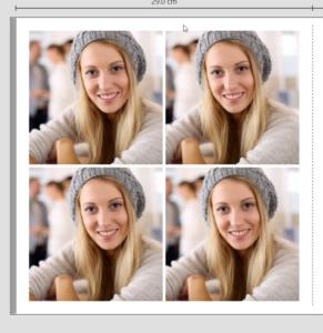 Bilder ins Fotobuch einfügen