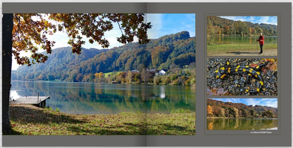 Fotos gekonnt kombinieren