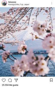 imagen de paisaje floral de hirozzzz