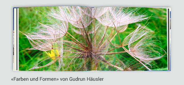 colorfotoservice_blumen_kunden_beispiele_farben_formen