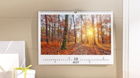 kalendar_herbst_baum_farbe_licht_102017_baumblatter
