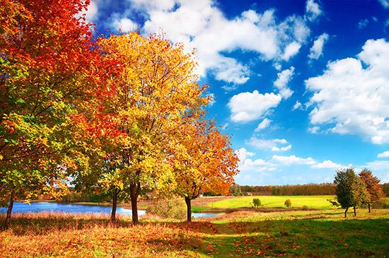 Der Herbst ist ein farbenfrohes Fest für jeden Fotografen