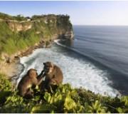 fototipp_gestaltungtipp_bali_indonesia_urlaub_ferien_traumreiseziel