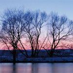 Eis und Schneelandschaft